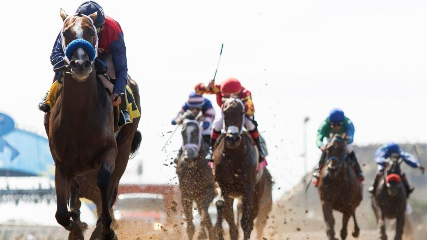 In this photo provided by Benoit Photo, Miss Sunset with jockey Mike Smith, left, win the $150,000 F