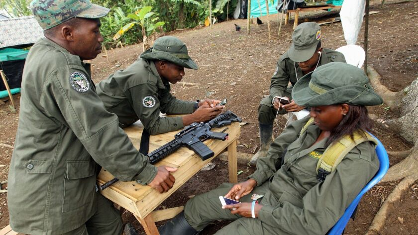 A member from Revolutionary Armed Forces of Colombia (FARC) rests in a transitory camp in Tumaco town, Narino, Colombia.