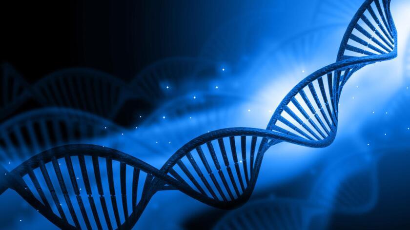 El proyecto también incluiría la creación de genomas de animales y plantas y nuevos métodos para editar el ADN.