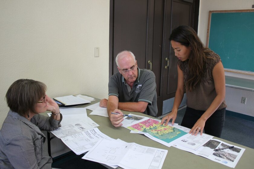 DPR member Diane Kane and chair Paul Benton work with AT&T project manager Caitlyn Kes during the project's first hearing Aug. 9.