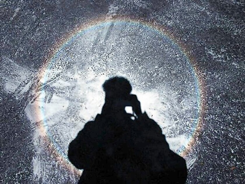 A glassbow surrounding Walter Lewin's shadow at the deCordova Museum in Massachusetts.