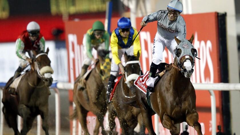 Jockey Victor Espinoza celebrates aboard California Chrome after winning the Dubai World Cup on Saturday.