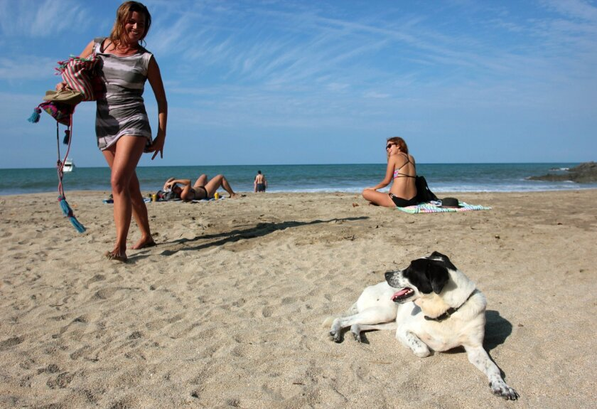 In this Dec. 2, 2015 photo, a woman leaves Playa de los Muertos, or Beach of the Dead, while a dog looks on in Sayulita, Mexico. The once tranquil fishing town of Sayulita has matured to a top travel and retirement destination in Mexico. The couple spends half their year in Sayulita.  (AP Photo/Man