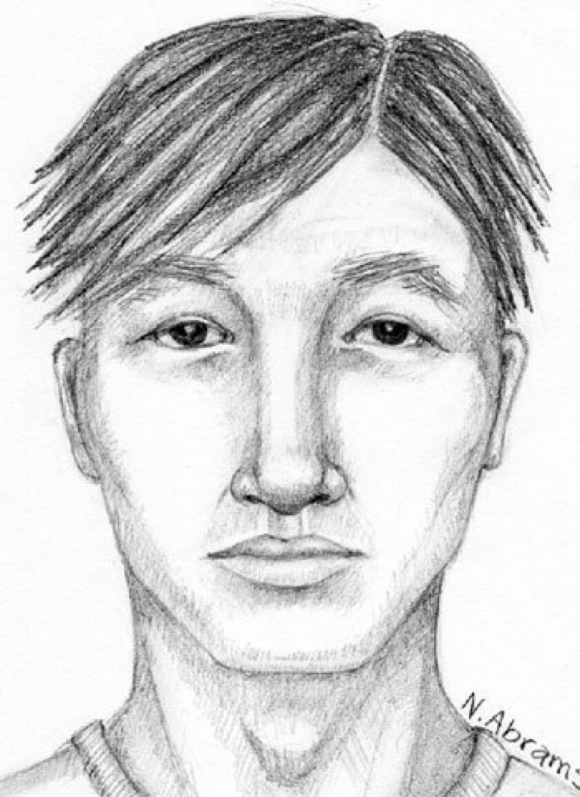 <strong>Composite of suspect </strong>