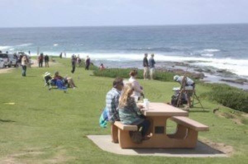 Whale View Lookout Park would receive new turf through the plan, with barren patches removed.