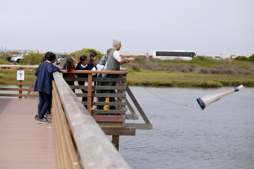 Photo Gallery: Students learn about oceanic life at Bolsa Chica Ecological Reserve