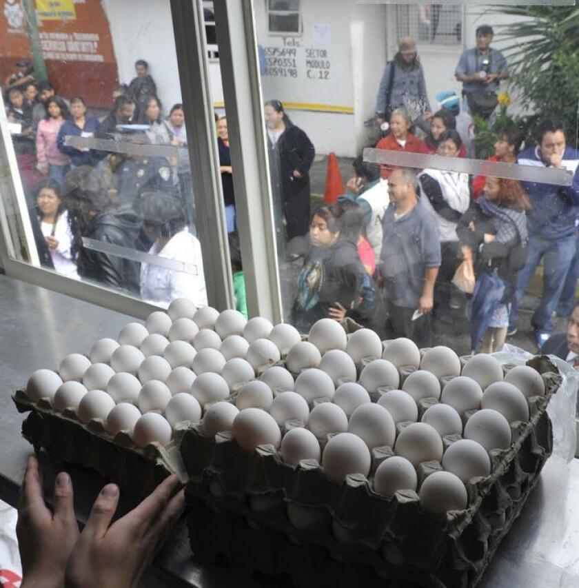 Los Centros de Control y Prevención de Enfermedades (CDC) informaron hoy que el brote de salmonela vinculado a huevos de llegó a su fin con un saldo de 45 personas enfermas y al menos once hospitalizaciones. EFE/ARCHIVO