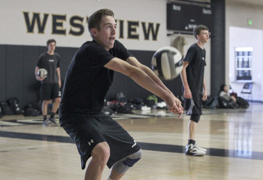 Westview senior Slater Bird (shown in an earlier match) led the Wolverines with 15 kills.