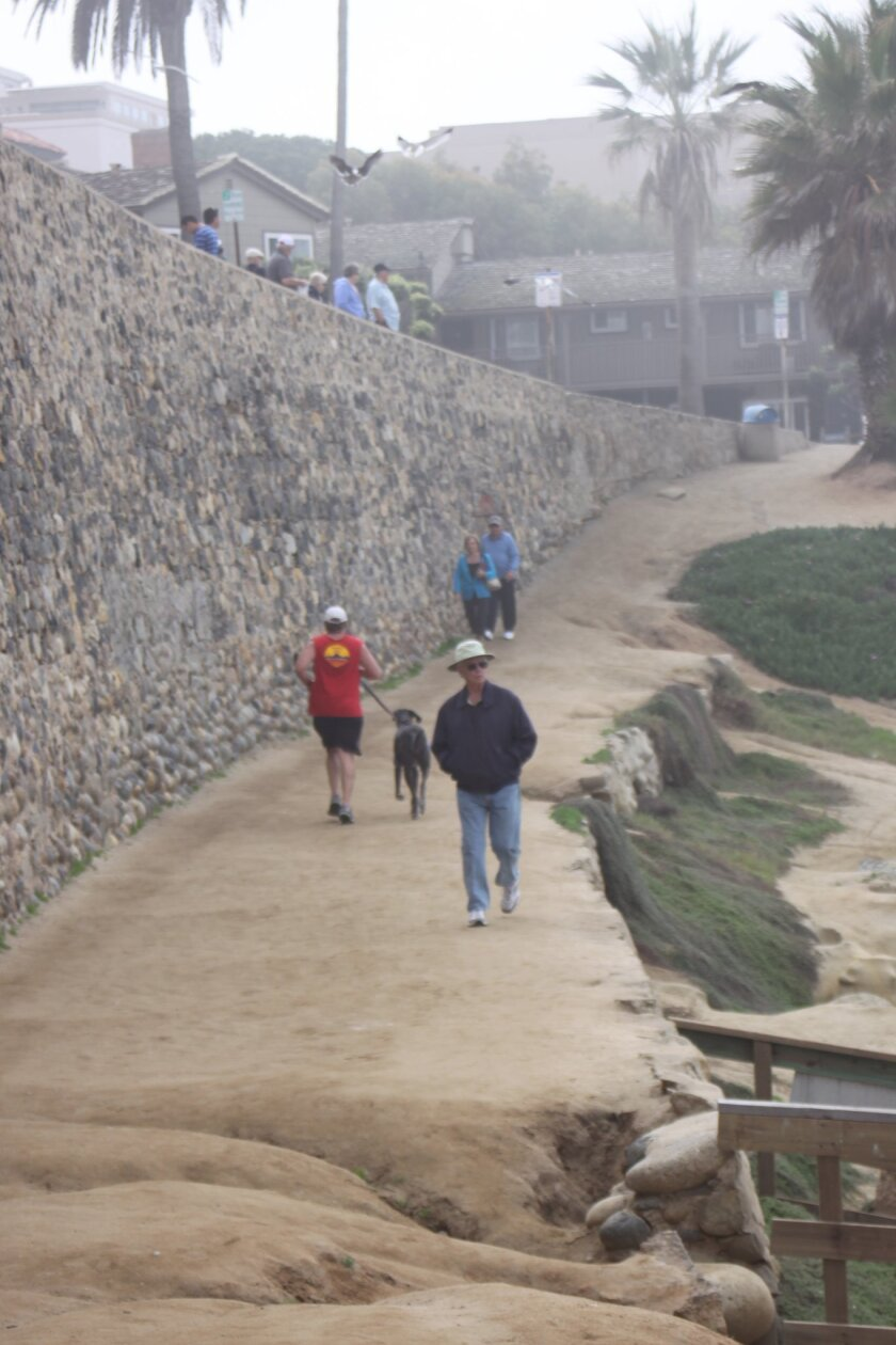 The walking path under the climbing wall or 'people's wall' would be stabilized and restored under the Whale View Point Shoreline Enhancement Project.