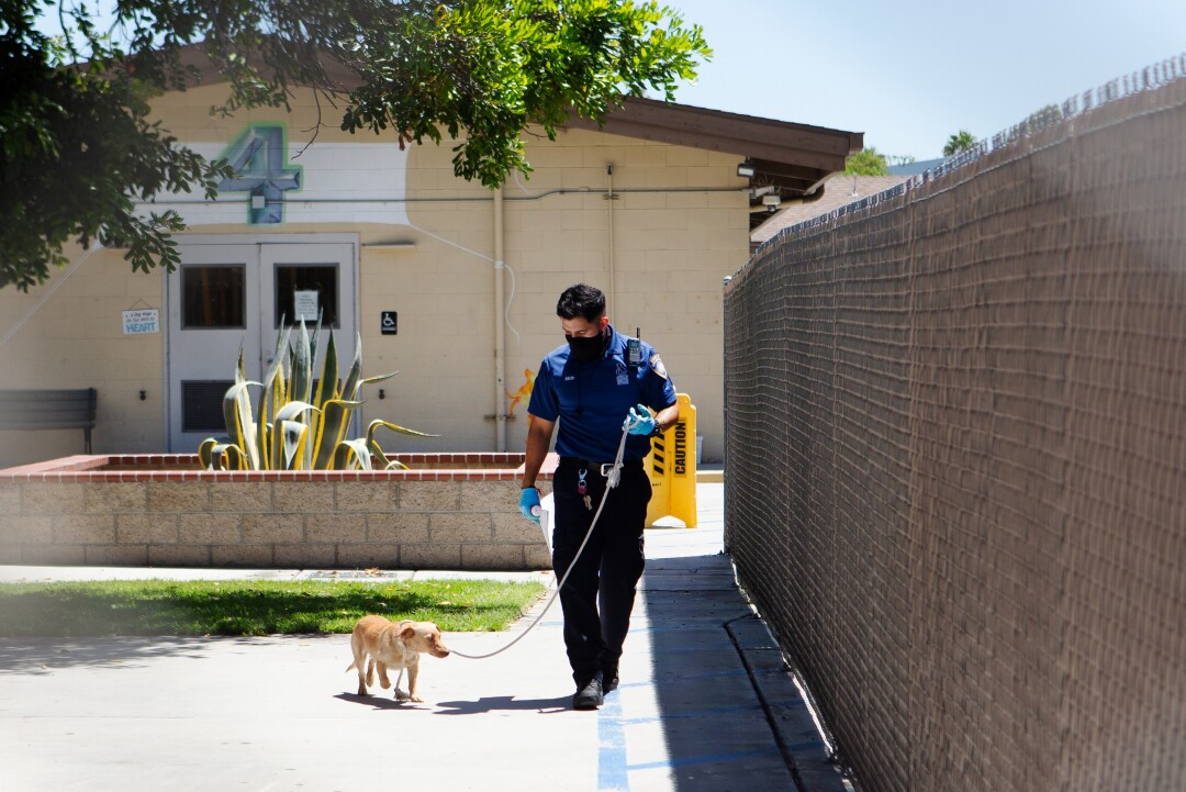 Julio Rovira looks down at a recently adopted terrier mix while walking her to her new owner, Kavar McDaniel.