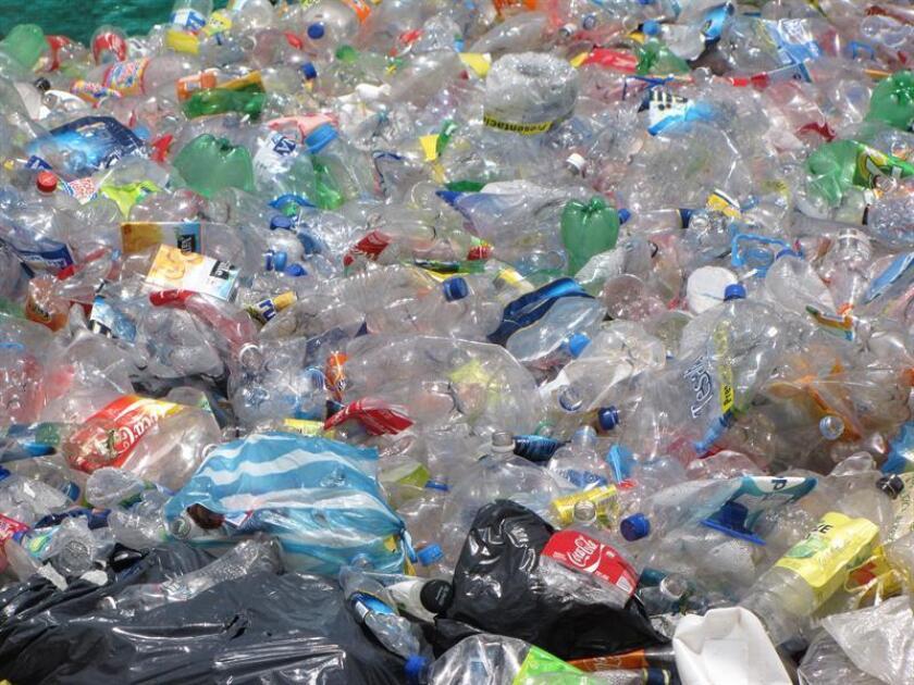 Innovación en botellas y envases autodegradables son algunos de los avances en materia medioambiental que se desarrollan en México, el país de América Latina líder en este tipo de reciclajes gracias a la planta recicladora más grande del mundo. EFE/Archivo