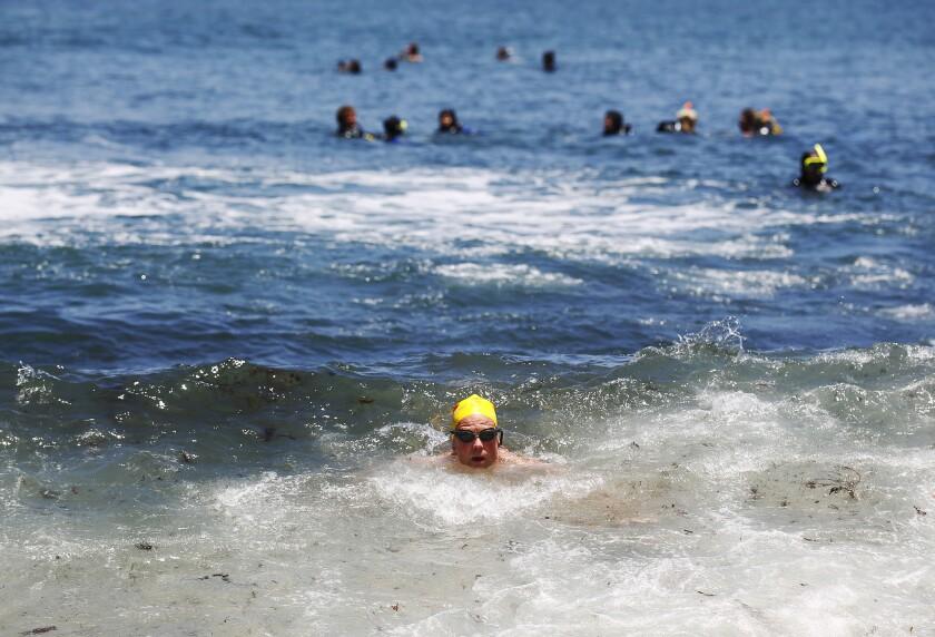 David Granger nada en La Jolla Cove el 7 de junio de 2018. Heal the Bay lanzó su 28º Informe Anual de Playa y destaca que la reciente sequía en el sur de California ha mejorado la calidad del agua oceánica.
