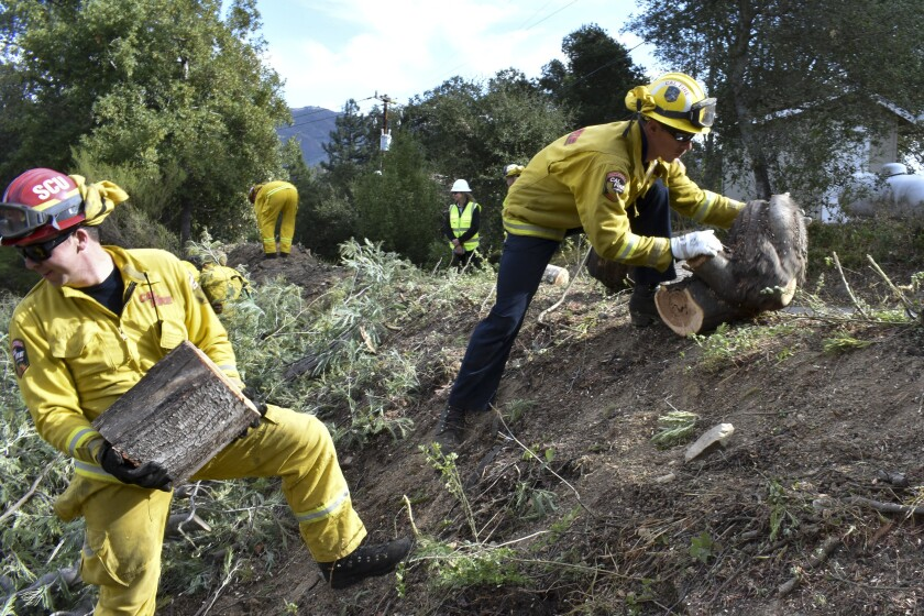 FILE - In this Nov. 20, 2019, file photo a fire prevention crew hauls away sections of a tree they cut down near Redwood Estates, Calif. California Gov. Gavin Newsom has vastly overstated wildfire prevention work done under his administration according to an investigation by Capital Public Radio published Wednesday, June, 23, 2021. (AP Photo/Matthew Brown, File)