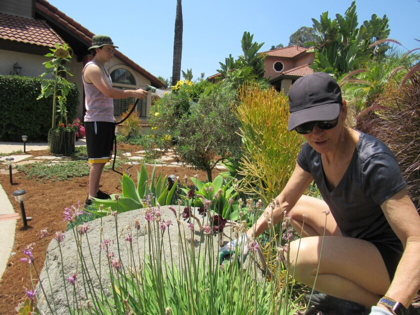 Christine Laframboise and her son, Blake, work on the landscape that won top honors in an Otay Water District contest.