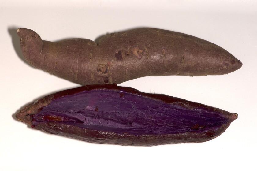 Stokes Purple sweet potato grown in Livingston, Calif.