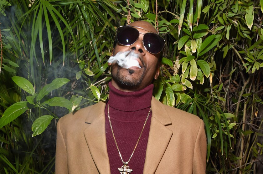 Young, Wild & Free (feat. Bruno Mars) by Snoop Dogg and Wiz Khalifa is a great addition to music playlists while smoking sativa strains.