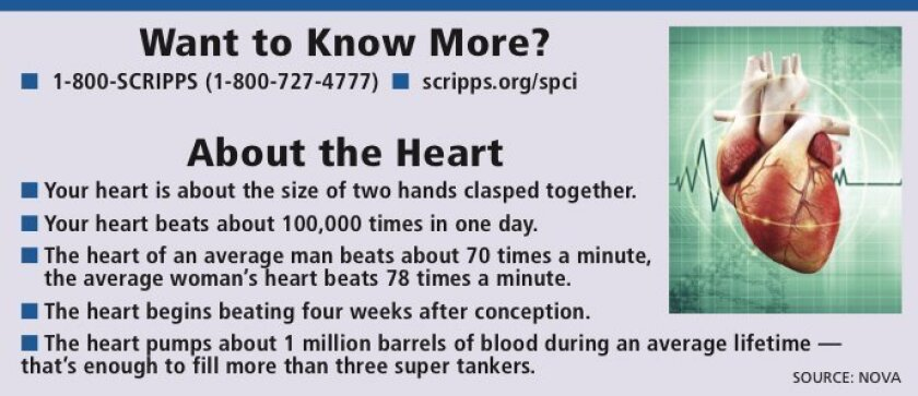 Cardiac_Facts