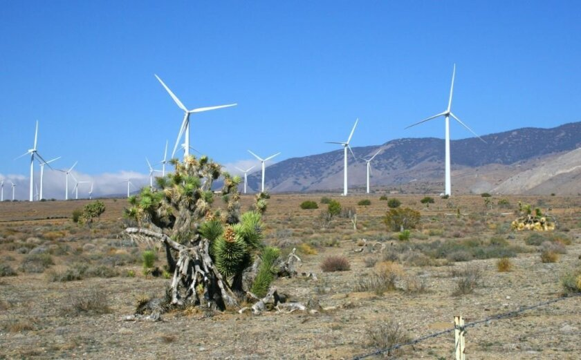 Developers of the Tule Wind Project in San Diego's East County expect to start construction in September. Pictured is the Manzana wind farm, a 189-megawatt project in Kern County, operated by Avangrid Renewables, which will run the Tule project.