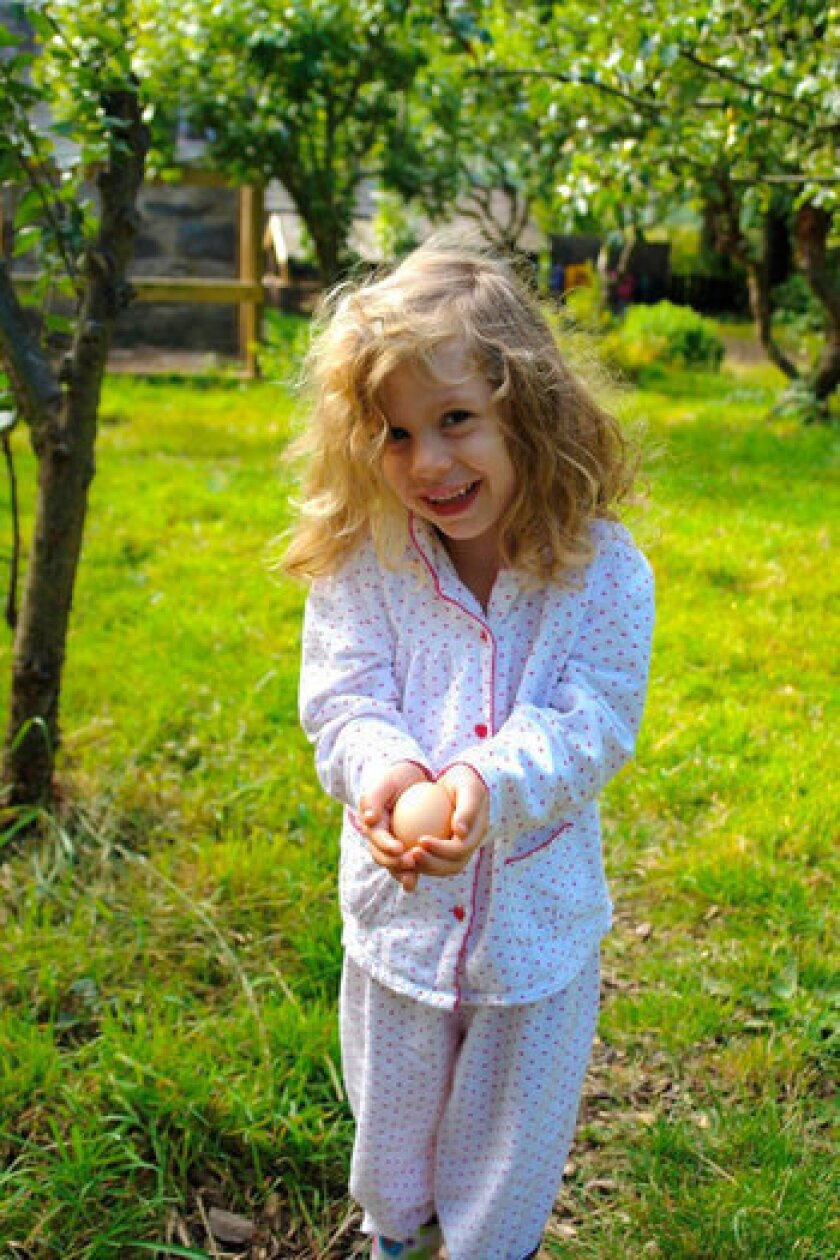 Children can help out around the farm by feeding animals and collecting eggs for breakfast.