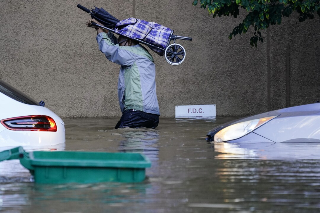 A person holds a bag over their head as they walk through waist-deep floodwater.