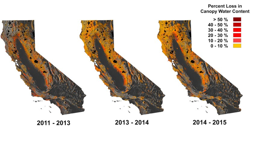 Maps show spread of drought across California forests