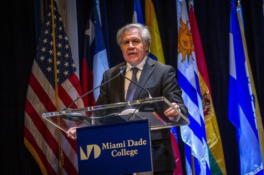 """El secretario general de la Organización de Estados Americanos (OEA), Luis Almagro, habla durante su participación en el foro """"?Están las democracias latinoamericanas secuestradas por el crimen organizado?"""" celebrado en el Miami Dade College (MDC) en Miami, Florida (EE.UU.) EFE/Archivo"""