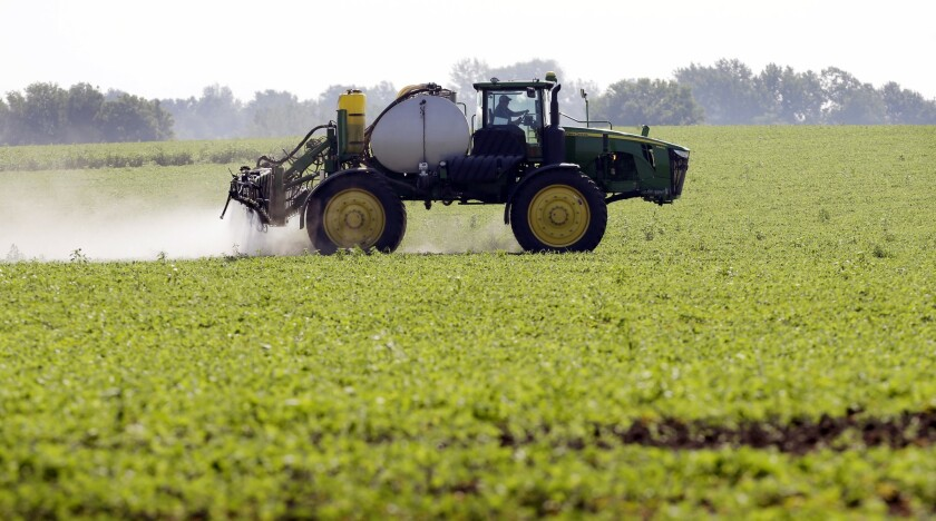 A new generation of herbicide-resistant crops is wending its way through the federal approval process.