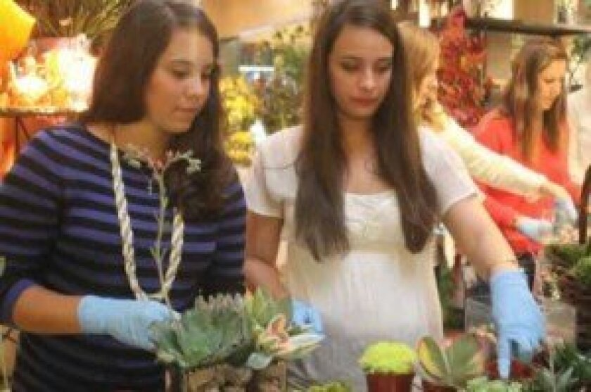 Suze Banashak and Chloe Pedersen pick out plants for their terrariums.