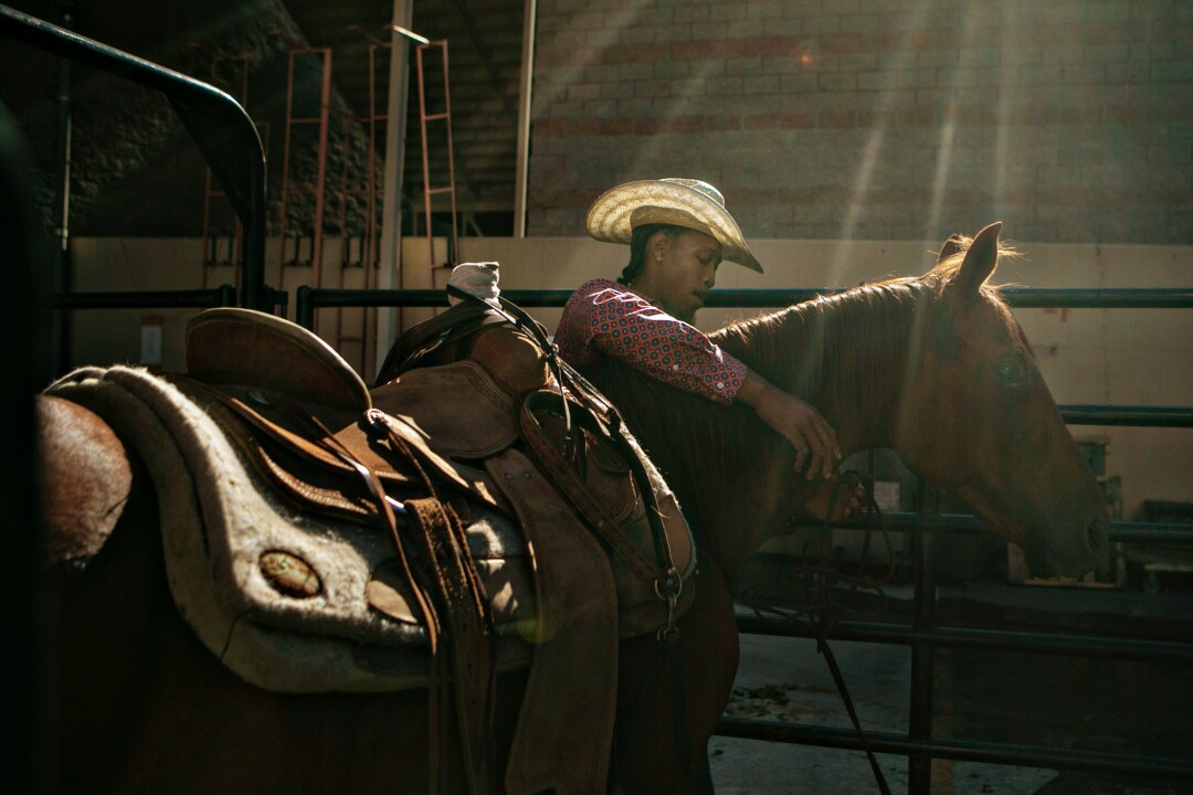 A cowboy prepares a horse to be loaded into a trailer at the end of the rodeo.