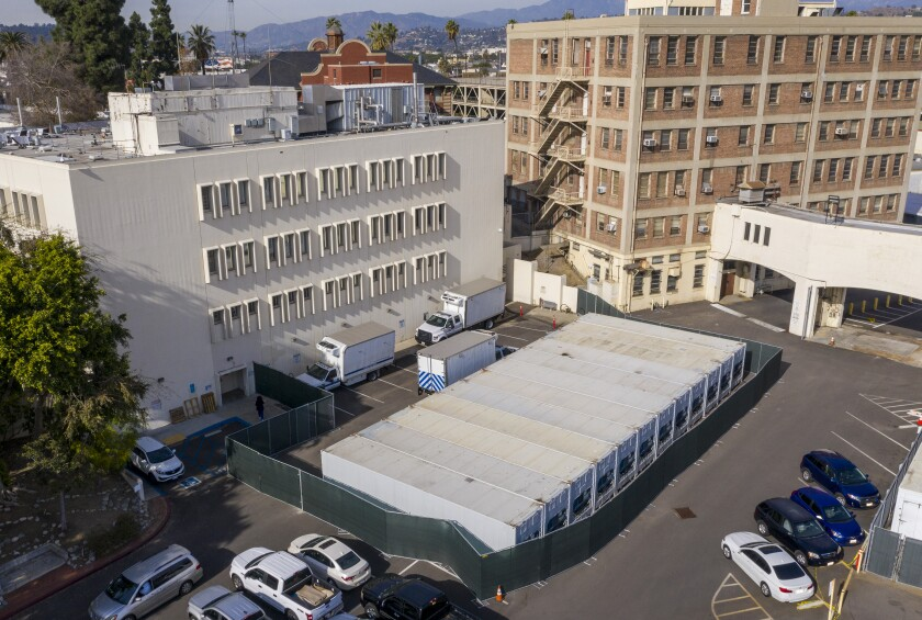A dozen refrigerated storage containers are lined up in the parking lot at the Los Angeles County coroner's complex.