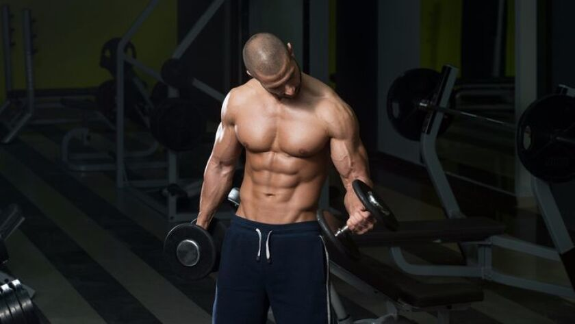 A bodybuilder works out his biceps using dumbbell concentration curls.
