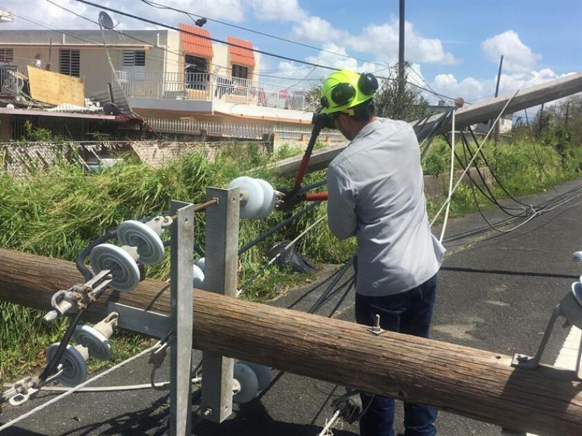 El secretario de Asuntos Públicos y Política Pública, Ramón Rosario Cortés, informó hoy que continúa aumentando la cantidad de personal que trabaja en el arreglo de las líneas de transmisión y distribución de energía de la isla y que ya hay restablecido más del 42 por ciento de generación. EFE/ ARCHIVO