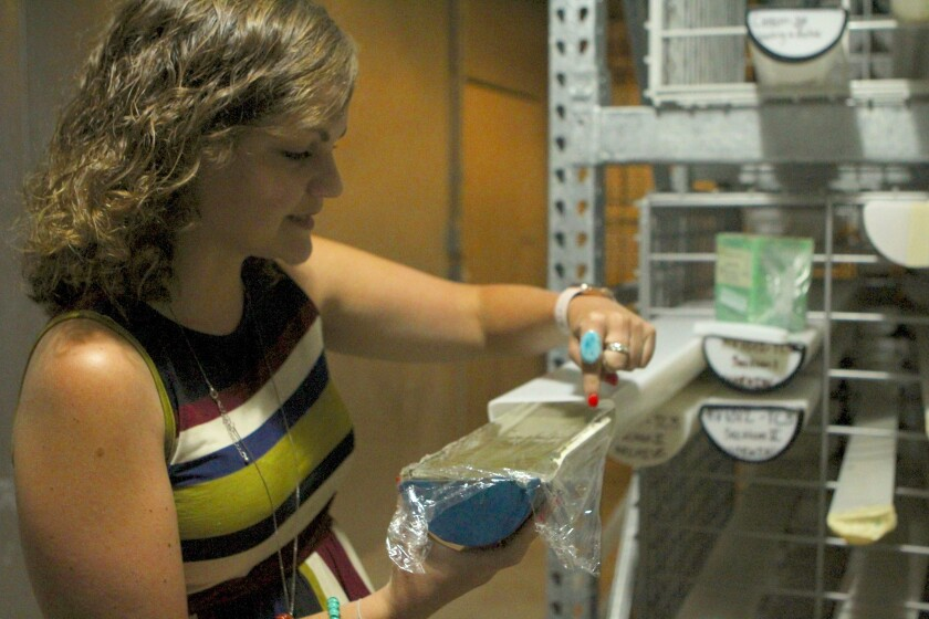 Scripps Institution of Oceanography biologist Jenni Brandon unwraps the sediment sample that helped her make a grim discovery about plastic accumulation in the ocean.