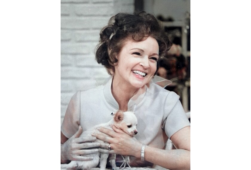 """This colorized image released by Margate And Chandler, Inc. shows actress and animal activist Betty White with a puppy from her 1970s series """"The Pet Set."""" The restored 39-episode series, renamed """"Betty White's Pet Set,"""" features celebrity guests Mary Tyler Moore, Carol Burnett, Burt Reynolds, James Brolin and Della Reese. (Margate And Chandler, Inc. via AP)"""