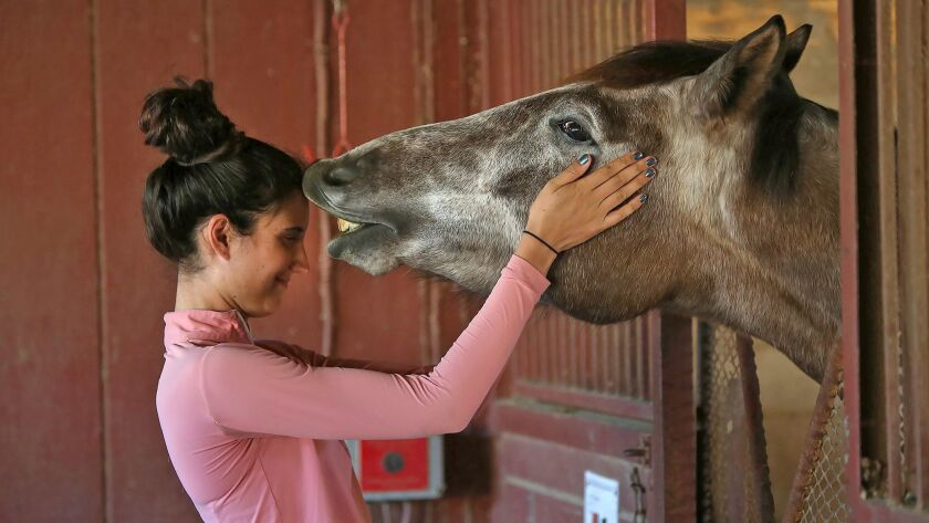 """Student Maggie McKitrick connects with """"Greymer"""" at the Huntington Beach Central Park Equestrian Cen"""