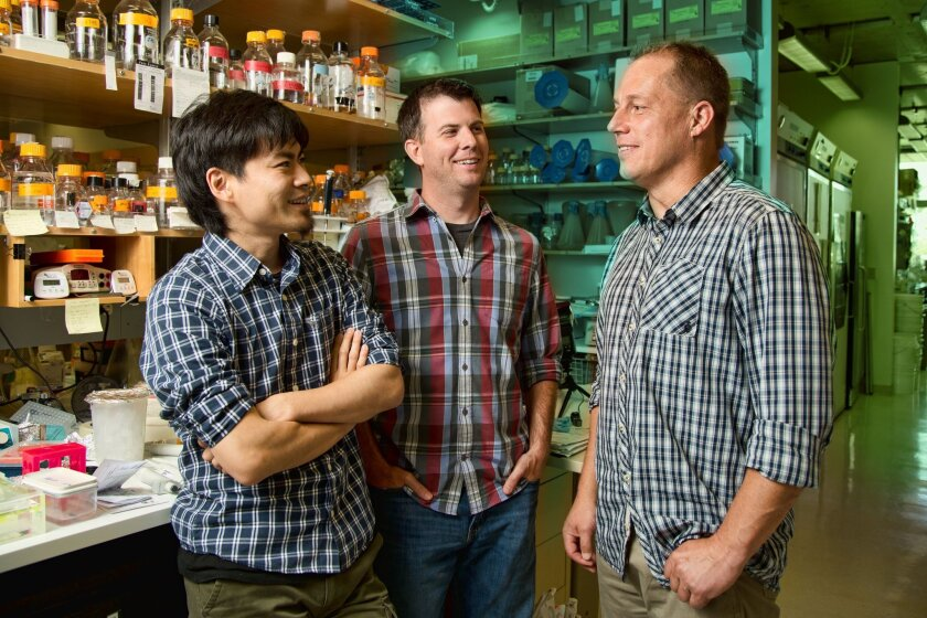 From left:Makoto Hayashi, Anthony Cesare and Jan Karlseder of the Salk Institute.