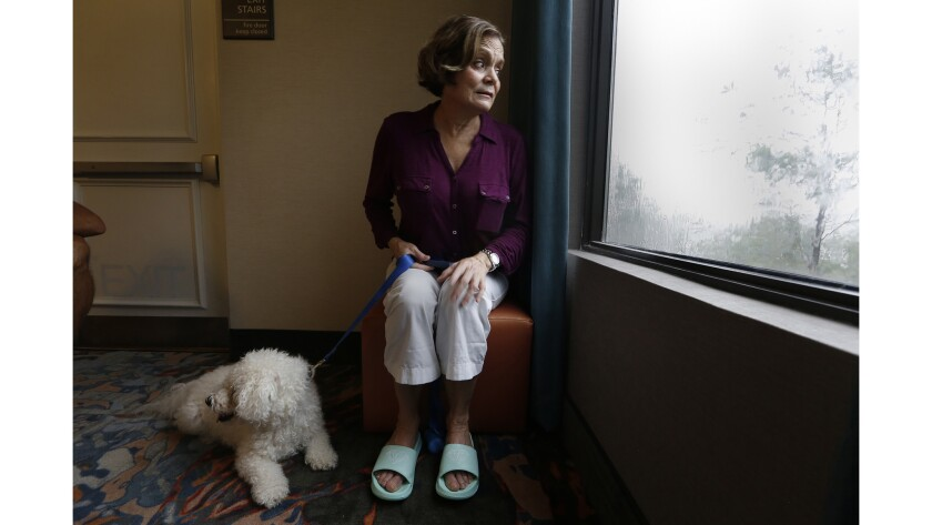 Maria Koenig,of Estero and her dog Baeley sit by the window at their hotel where she keeps an eye on the storm.