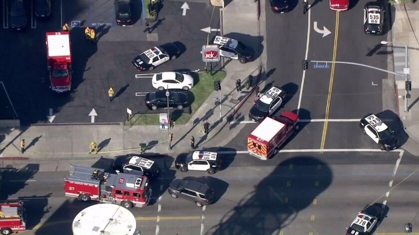 Multiple stabbings and a police shooting were reported in Hollywood on Jan. 31.