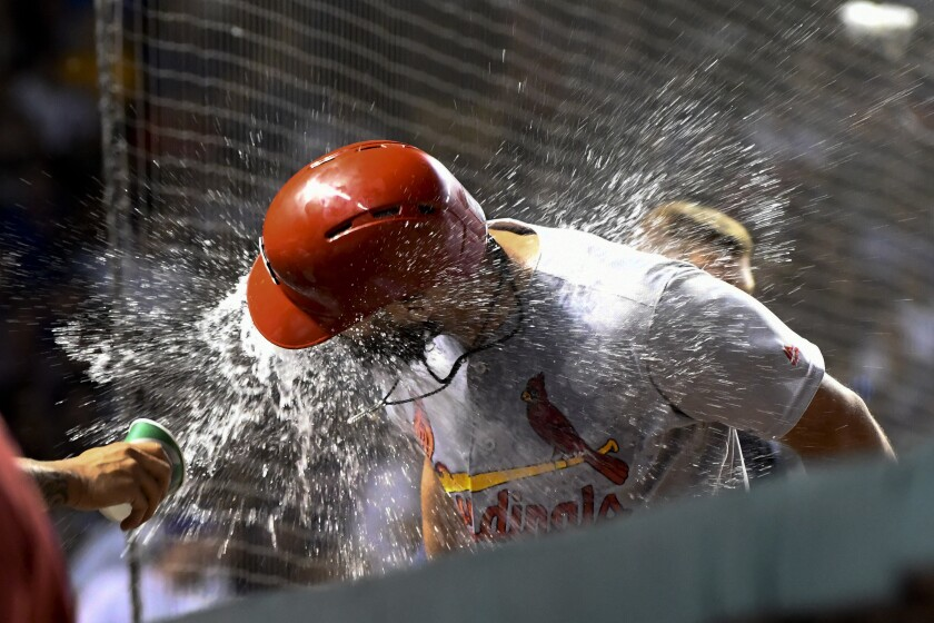 St. Louis Cardinals' Matt Carpenter is doused with water in the dugout after he hit a home run against the Chicago Cubs during the 10th inning of a baseball game Thursday, Sept. 19, 2019, in Chicago. (AP Photo/Matt Marton)
