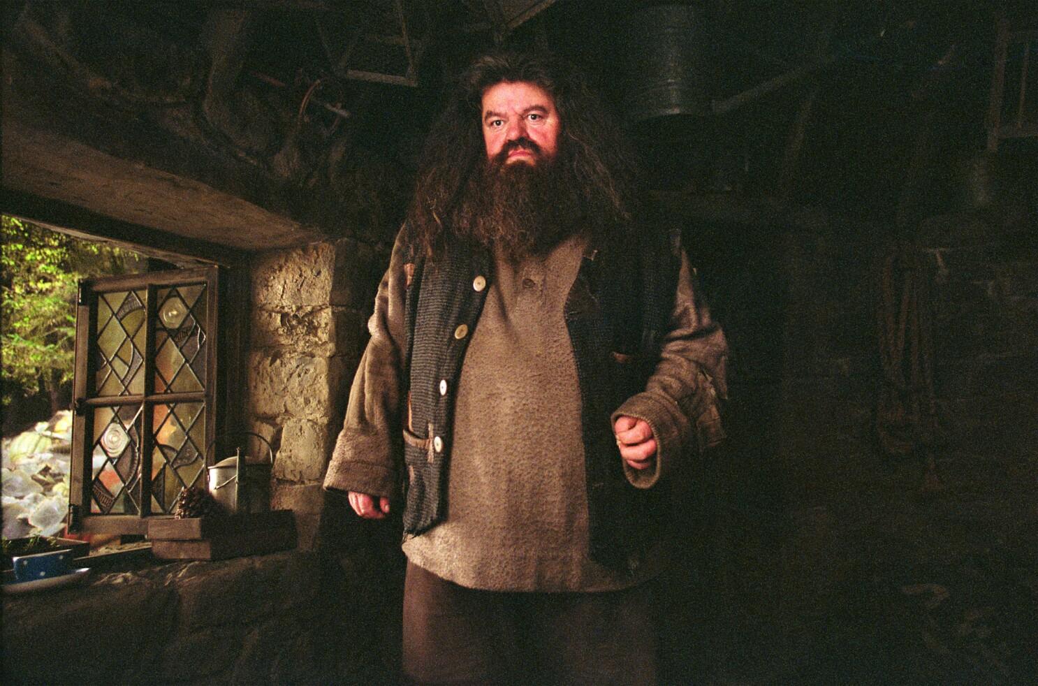 J K  Rowling's truth about Hagrid spawns sad 'Harry Potter' fan