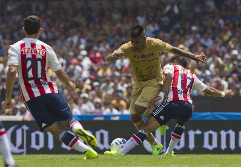 Los Pumas se volverán a enfrentar a las Chivas de Guadalajara en la primera semana del Torneo Clausura 2017 del futbol mexicano.