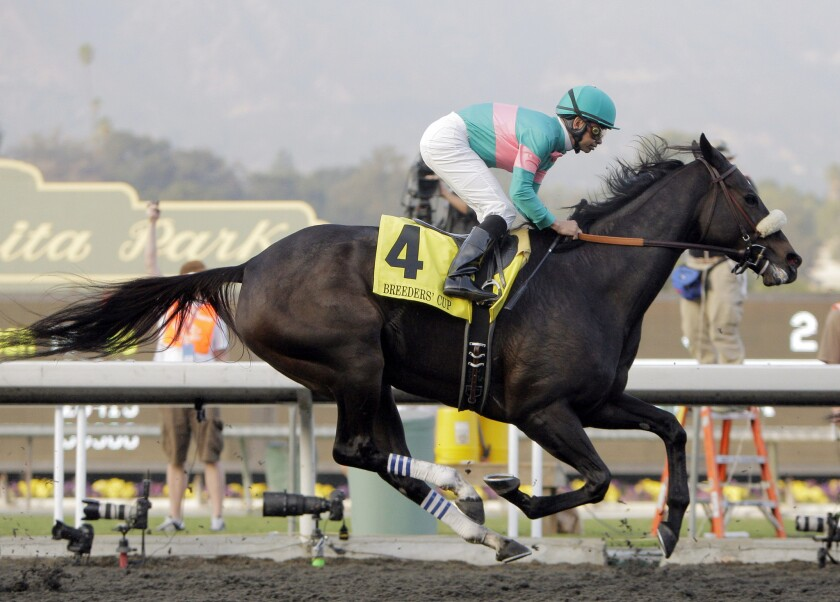 Mike Smith rides Zenyatta to victory in the Breeders' Cup Classic at Santa Anita Park in November 2009.