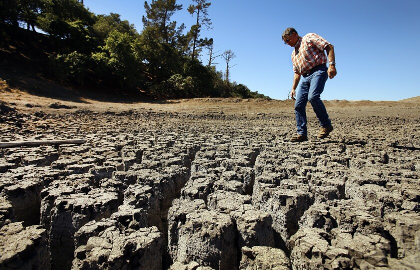 A rancher walks over a dried and cracked pond