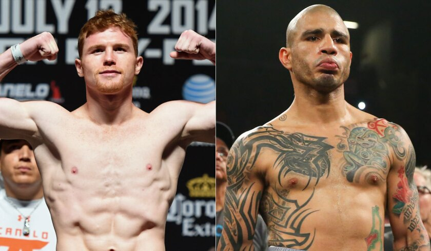 """Saul """"Canelo"""" Alvarez, left, and Miguel Cotto have been training for a Nov. 21 fight."""