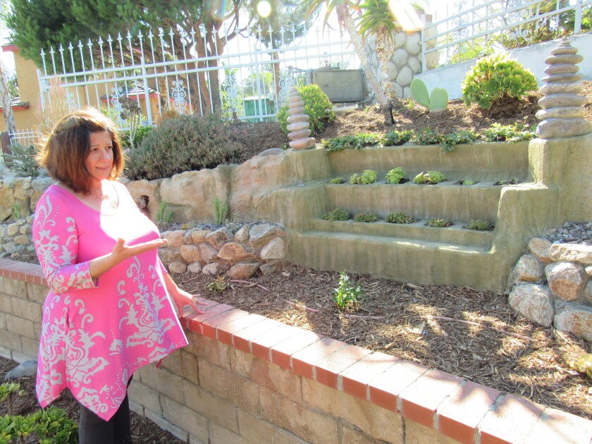 """La Mesa resident Shan Cissell looks over some of the work done in her back yard last year and in 2019 by she and her husband, Bob, to be water wise. The couple is this year's Otay Water District winner for the """"Best in District"""" in the San Diego County Water Authority's annual WaterSmart Landscape Contest."""