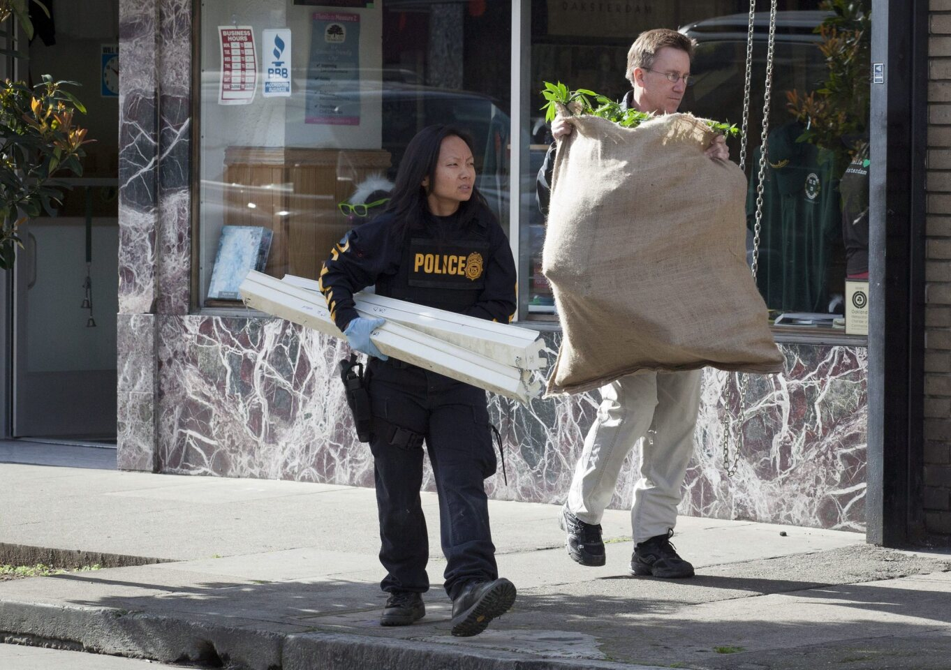 Agents from the DEA and the IRS-CID load an alleged bag of cannabis and light fixtures from the Oaksterdam gift shop during an early morning multi-agency raid in Oakland. Oaksterdam University runs several facilities in downtown Oakland for education and distribution of medical cannabis.