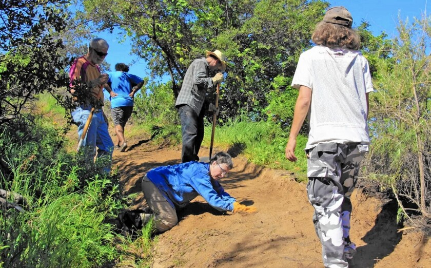 Volunteers help clear Brand Lateral Trail