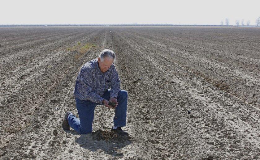 """""""A medida que llega La Niña, es probable que no nos ofrece una buena señal para la sequía en el sur de California"""", agrega Carlin, un geólogo marino. """"Las probabilidades son que va a ser un invierno seco""""."""