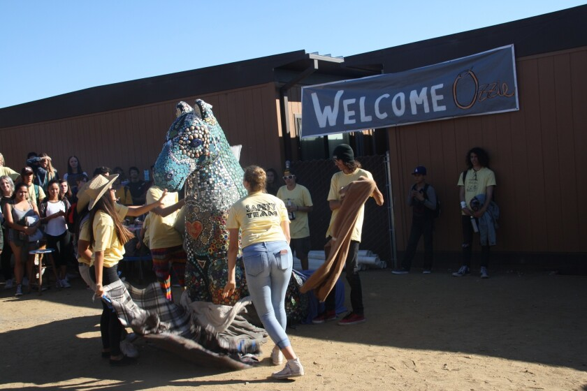 Ozzie the Seahorse