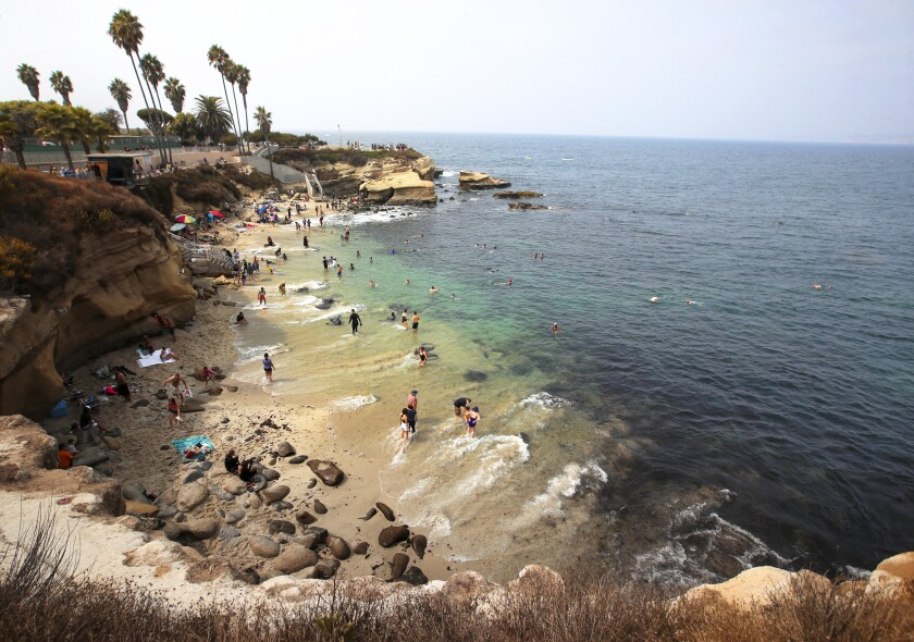 Beach-goers take to the water at La Jolla Cove.